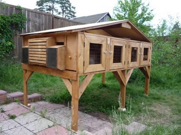 Как построить крольчатник на даче